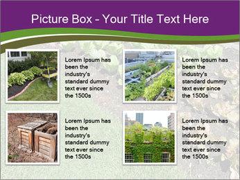 Garden PowerPoint Template - Slide 14