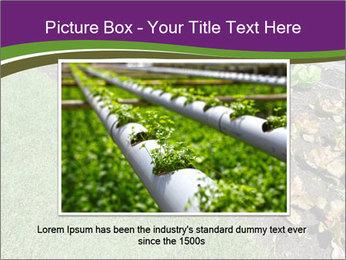 Garden PowerPoint Template - Slide 15