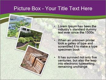 Garden PowerPoint Template - Slide 17