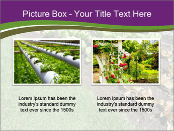 Garden PowerPoint Template - Slide 18