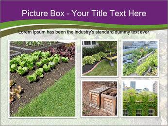 Garden PowerPoint Template - Slide 19