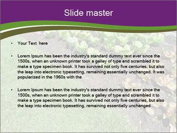 Garden PowerPoint Template - Slide 2