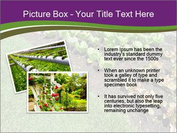 Garden PowerPoint Template - Slide 20