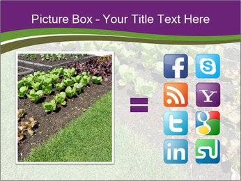 Garden PowerPoint Template - Slide 21