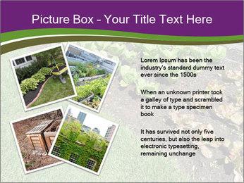 Garden PowerPoint Template - Slide 23