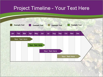 Garden PowerPoint Template - Slide 25