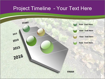 Garden PowerPoint Template - Slide 26