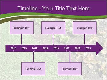 Garden PowerPoint Template - Slide 28