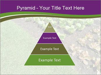 Garden PowerPoint Template - Slide 30