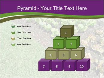 Garden PowerPoint Template - Slide 31