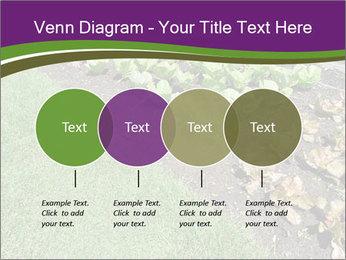 Garden PowerPoint Template - Slide 32