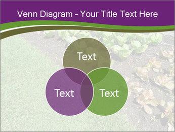 Garden PowerPoint Template - Slide 33