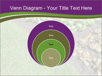 Garden PowerPoint Template - Slide 34