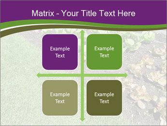 Garden PowerPoint Template - Slide 37