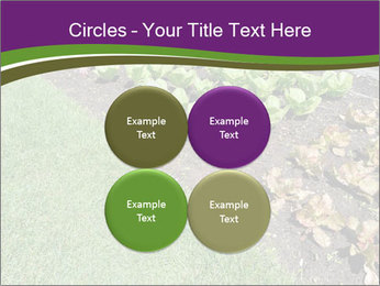 Garden PowerPoint Template - Slide 38