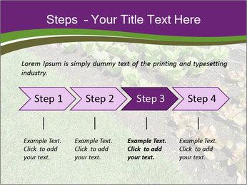 Garden PowerPoint Template - Slide 4