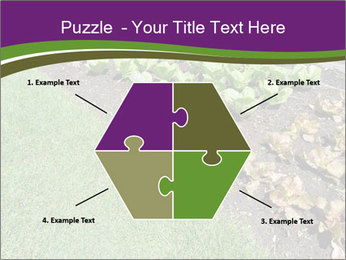 Garden PowerPoint Template - Slide 40