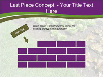 Garden PowerPoint Template - Slide 46