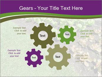Garden PowerPoint Template - Slide 47