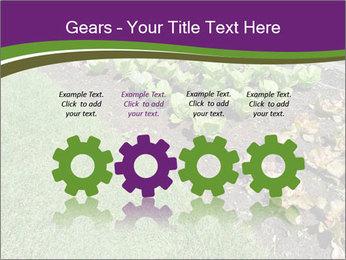 Garden PowerPoint Template - Slide 48