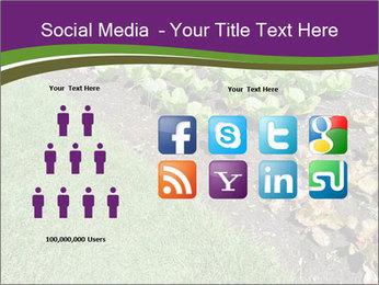 Garden PowerPoint Template - Slide 5