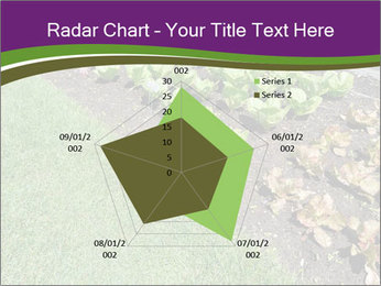 Garden PowerPoint Template - Slide 51