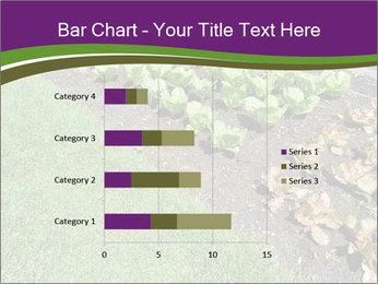 Garden PowerPoint Template - Slide 52