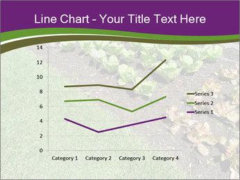 Garden PowerPoint Template - Slide 54