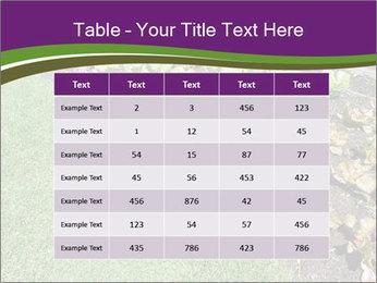 Garden PowerPoint Template - Slide 55