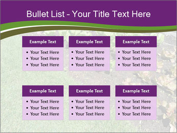 Garden PowerPoint Template - Slide 56