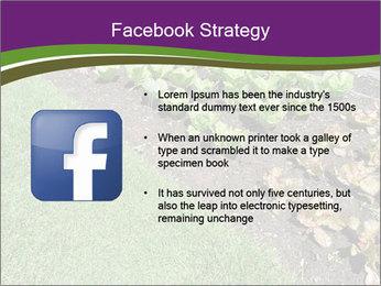 Garden PowerPoint Template - Slide 6