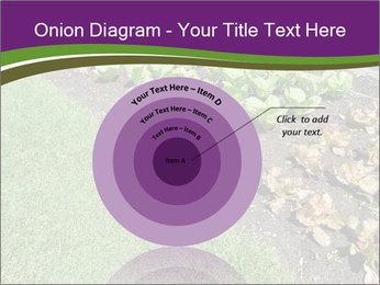 Garden PowerPoint Template - Slide 61