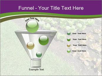 Garden PowerPoint Template - Slide 63