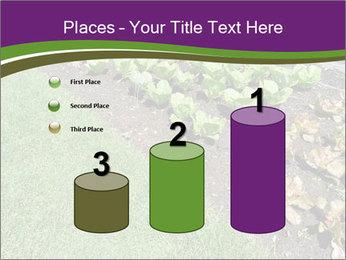 Garden PowerPoint Template - Slide 65