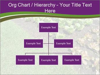 Garden PowerPoint Template - Slide 66