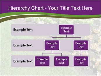 Garden PowerPoint Template - Slide 67