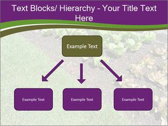 Garden PowerPoint Template - Slide 69