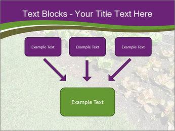 Garden PowerPoint Template - Slide 70