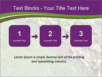 Garden PowerPoint Template - Slide 71