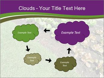 Garden PowerPoint Template - Slide 72