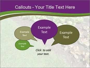 Garden PowerPoint Template - Slide 73