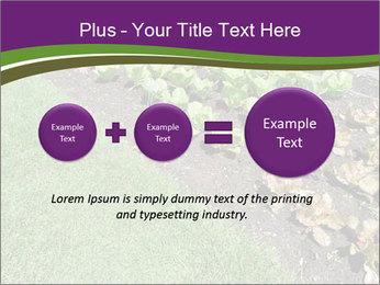 Garden PowerPoint Template - Slide 75