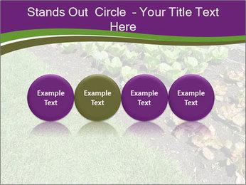 Garden PowerPoint Template - Slide 76