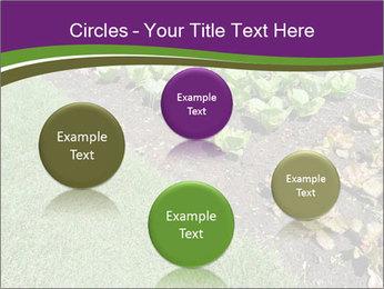 Garden PowerPoint Template - Slide 77