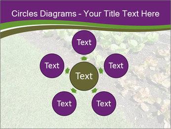 Garden PowerPoint Template - Slide 78