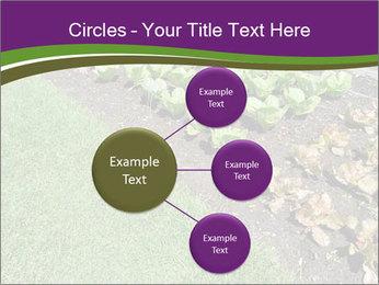 Garden PowerPoint Template - Slide 79