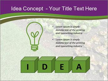 Garden PowerPoint Template - Slide 80