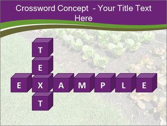 Garden PowerPoint Template - Slide 82