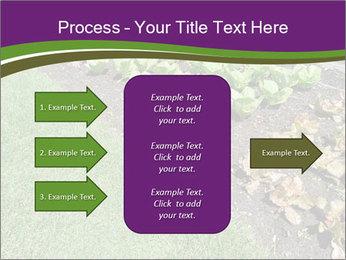 Garden PowerPoint Template - Slide 85
