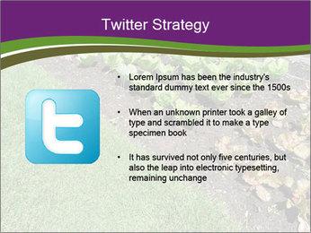 Garden PowerPoint Template - Slide 9